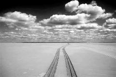 Foto: Carsten Reenberg   Vej sandspor Mandø