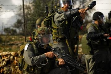 Steffen Jensen   Israel, Palæstina
